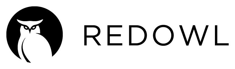 redowl cyber analytics security company