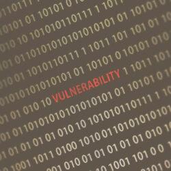 vulnerabilities in binary